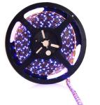 !LED trak SMD3528 8mm 60LED 4,8W/m - vodoodporen, moder