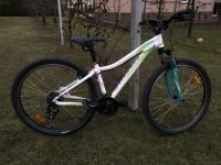 Spezialized Myka 650b